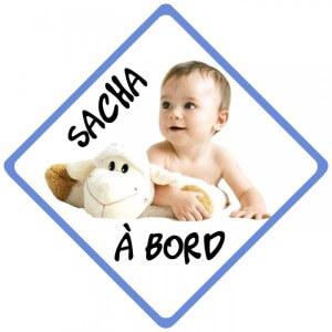 bébé à bord photo et texte pancarte
